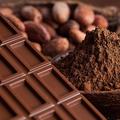 内臓脂肪をおいしく減らす!? 高カカオチョコは健康にいいこと尽くし!
