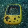 水深16mの砂地で見つかったポケットピカチュウの「抜け殻」(?)=矢北さん提供