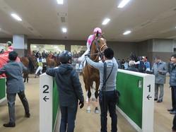 日曜東京3R新馬は7番人気の伏兵バルサミックムーンが4馬身差でV