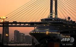 横浜港・大黒ふ頭に停泊するクルーズ船「ダイヤモンド・プリンセス」(2020年2月24日撮影)。(c)Kazuhiro NOGI / AFP
