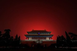 中国人ネットユーザーはツイッターに投稿し、中国に大量のバッタ襲来の可能性について「王朝崩壊の前兆だ」とした(Getty Images)