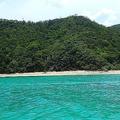 世界遺産委員会が来年6月に開催「奄美・沖縄」の登録審査へ