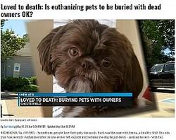 亡くなった飼い主の遺言により健康な犬が安楽死させられる(画像は『NBC12 2019年5月23日付「Loved to death: Is euthanizing pets to be buried with dead owners OK?」』のスクリーンショット)