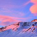 アルプス山脈で見つかった「ピンク色の雪」理由に藻類の可能性