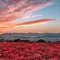 日本にこんな幻想的な絶景スポットがあったなんて!(提供:Ryogo Urataさん)
