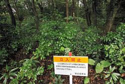 ダイオキシンを含む除草剤が埋められた現場には、立ち入り禁止の看板が立てられている=2021年3月17日午後2時29分、鹿児島県屋久島町宮之浦、屋久島通信員・武田剛撮影