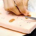 「傷口からの感染を検知して色が変わる縫合糸」米高校生が開発