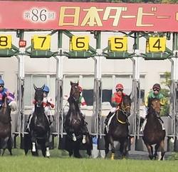 日本ダービー スタート時写真