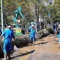 神奈川県川崎市では、前夜冠水した道路の清掃作業が行われていた