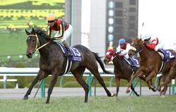 第60回阪神ジュベナイルフィリーズで圧勝した安藤勝己騎乗のブエナビスタ(左)