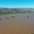 武蔵小杉のタワマンも台風被害に 修繕費巡り住民分裂の可能性も