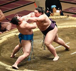 押し倒しで竜虎に勝った王鵬(右)