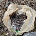 焚き火に使われた建築資材の釘が大量に見つかるケースも少なくない(提供)