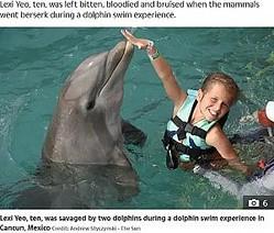 事故が起きる前、イルカと一緒に遊ぶ女児(画像は『The Sun 2019年11月29日付「HOLIDAY HORROR Brit girl, 10, savaged by two dolphins as they went berserk and 'dragged' her under the water」(Credit: Andrew Styczynski - The Sun)』のスクリーンショット)