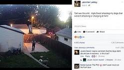 犬に向かって警官が発砲(画像は『Jennifer LeMay 2017年7月8日付Facebook「Yall see this shit...mpls finest shooting my dogs that weren't attacking or charging at him!」』のスクリーンショット)