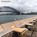 15日、中国メディアの今日悉尼は、オーストラリアのエコノミストがこのほど、「中国系移民の爆買いがオーストラリアの環境を汚染している」とする奇妙な内容の文章を発表したと報じた。写真はシドニー。