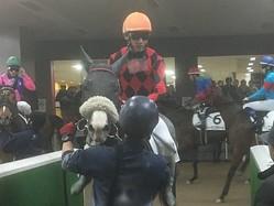 土曜東京4R新馬は柴田政人厩舎の最低人気チバタリアンが制す