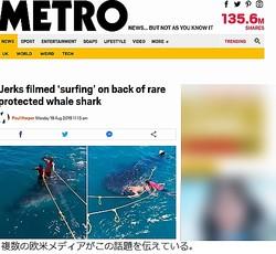 """""""ジンベイザメに乗ってサーフィン""""で大炎上"""