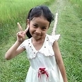 オオスズメバチの群れに襲われ亡くなった女児(画像は『The Sun 2020年1月7日付「SWARM OF DEATH Girl, six, stung to death by swarm of killer hornets while cycling home from school」』のスクリーンショット)