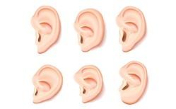 「耳たぶ」の形で金運がわかる!耳たぶが四角い人は金銭トラブルの可能性!?