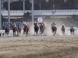 【東京大賞典】ルメール 「ラストは疲れてしまった」レース後ジョッキーコメント
