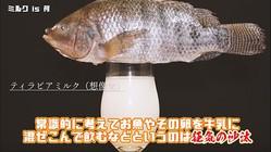 """タピオカならぬ""""ティラピア(魚)""""ミルクティーを作る猛者現る→なるほど、確かに美味しそうな""""ティー""""だ"""