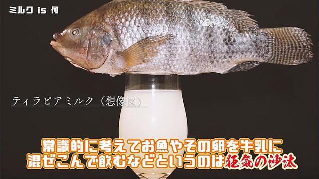 """[画像] タピオカならぬ""""ティラピア(魚)""""ミルクティーを作る猛者現る→なるほど、確かに美味しそうな""""ティー""""だ"""