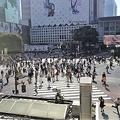 11日、中国のネット上に東京を旅行した中国人観光客による手記が掲載された。写真は作者提供。