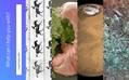 クマムシは地球滅亡後も生き残る・DNAに動画を記録再生・AI弁護士、米英の法律問題に対応 #egjp 週末版88