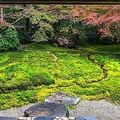 外国人が驚く 日本人の特異な「自然観」とは