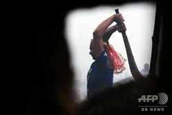 ネパールのバリヤプールで開幕したヒンズー教の祭りで、水牛を殺す信者(2019年12月3日撮影)。(c)Prakash MATHEMA / AFP