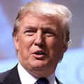トランプ大統領のTwitter停止を求め1万人超が署名 名指しでヘイト投稿