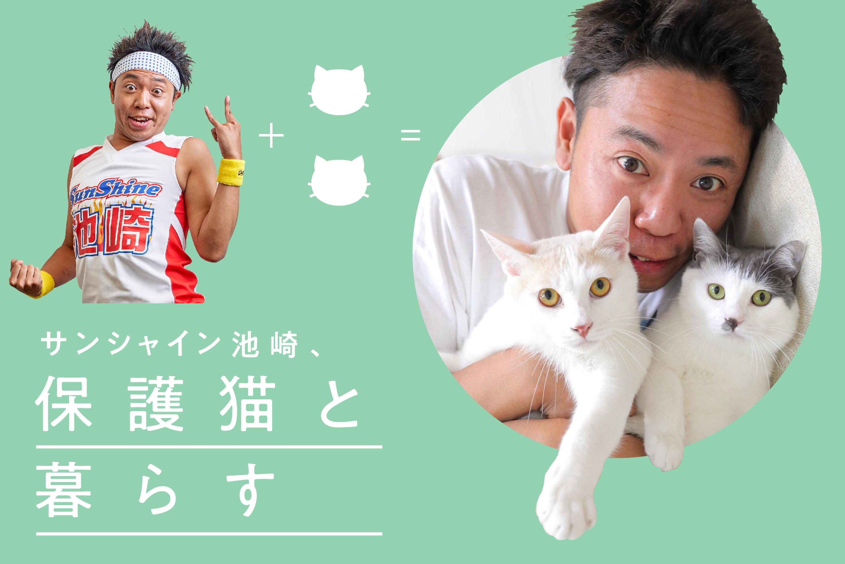 「芸風が違う」とか気にしない。サンシャイン池崎、「保護猫」愛を語る