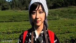 斎藤ちはるアナ、茶摘み体験!茶畑で「早乙女」の衣装をまとう