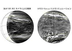 (左)あかつきIR2カメラで観測された金星下層雲。明るい部分が雲の薄い領域を表す。黄色破線で囲った部分に惑星規模筋状構造が見られる。(右)AFES-Venusのシミュレーションで再現された惑星規模筋状構造。明るい部分が強い下降流を表す。(画像: 神戸大学の発表資料より)