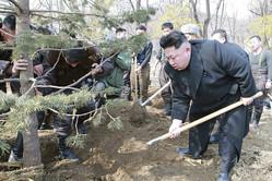植樹事業を現地指導する金正恩氏(2015年3月2日付労働新聞)