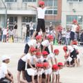 日本でも「組体操」は社会問題になっているが…