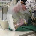 レジ袋の有料化から10日 変化は?
