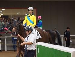 【東京4R/2歳新馬】モレイラ「能力ある馬」ウオッカの仔 タニノミッションがデビュー勝ち