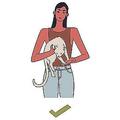 猫の抱き方3つ(2)