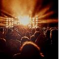 音楽フェス市場 前年比98%減