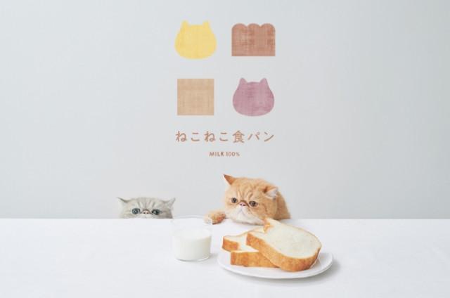 [画像] 人気「ねこねこ食パン」新店が登場! ねこスイーツ&食器も充実でねこ好き必見♪
