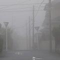 埼玉や千葉で濃霧、車の運転などに注意 午前中には解消へ