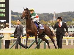 【ジャパンC】ビュイック「良馬場で改めて…」レイデオロは11着大敗