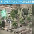 イギリスでクリスマスツリー350本が盗まれる 日本円で342万円相当
