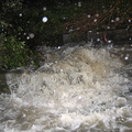 洪水多発地域に建つ物件の説明は、十分になされない場合が多い