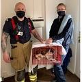壁の隙間から無事に救出された猫(画像は『Manchester Evening News 2021年4月20日付「Family cat rescued from wall cavity of house after being stuck for THREE WEEKS without food or water」(Image: RSPCA)』のスクリーンショット)