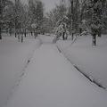 常磐公園、旭川市(2012年2月10日Nagonoさん撮影、Wikimedia Commonsより