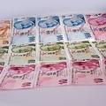 リラ急落で世界同時株安に トルコは歯止めかける利上げに及び腰