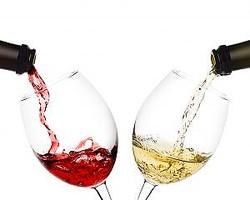 赤ワインと白ワインの基本的な違いは説明できるようにしておきましょう